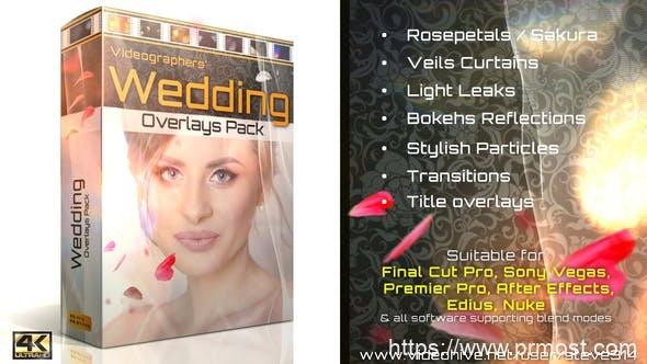 36个4K浪漫爱情婚礼玫瑰花瓣飘落光效过渡叠加视频素材