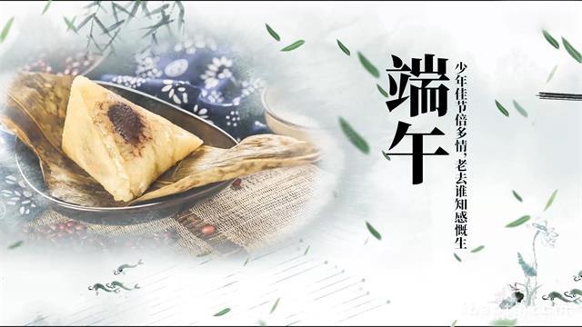 720水墨风中国柳叶飘飞水墨飞带端午纪念Pr模板